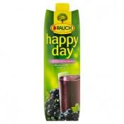 Rauch Happy Day Nektar z černého rybízu vyrobený ze šťávy a částečně z koncentrátu černého rybízu 1l