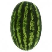 Meloun vodní 1kg