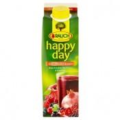 Rauch Happy Day 100% Multivitamínová šťáva z vícedruhového ovocného koncentrátu s 8 vitamíny 1l