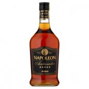 Stock Napoleon Ambassador 28% 1x700ml