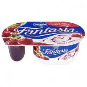 Danone Fantasia Jogurt višeň 122g