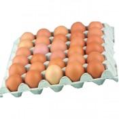 Čerstvé vejce, jakostní třída A, velikost M, původ z čR